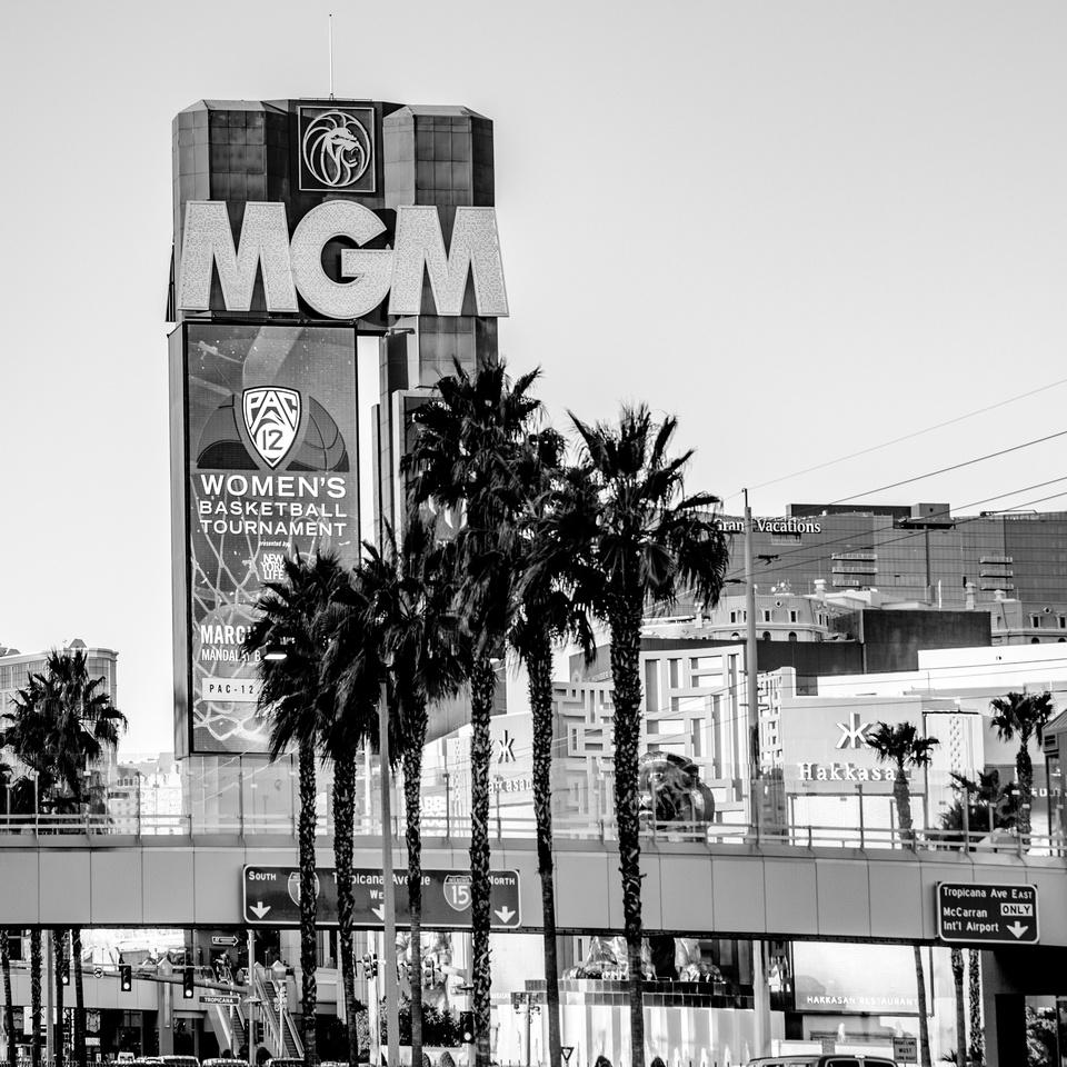Vegas20202
